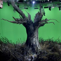 Ancient tree ship set - Filming