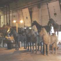 Here the assembly line and finition of the different type of horses all together. Sculpture in styro for the bigger ones and in clay for the small ones, molded and casted in plaster. Smaller ones with saddles were sculpted by Tino Petronzio and Mao Clavet