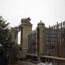 NEW DELHI set - Back view
